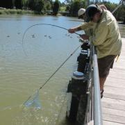 fishing at lake belvedere