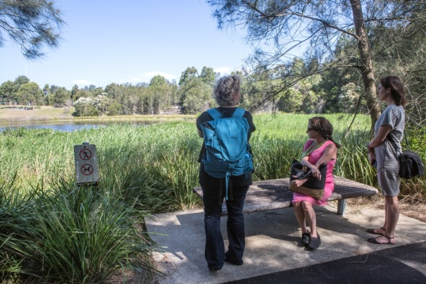 Ladies look out over a wetland at Sydney Olympic Park