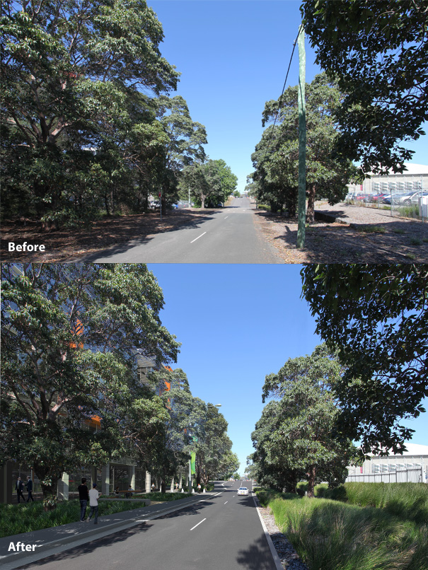 Before shot and after illustration of the Murray Rose Avenue street project that includes water sensitive design including rain-gardens