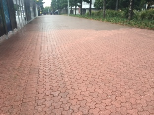 cleaned pavers