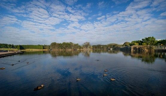 7-lake-belvedere-paul-k-robbins-pkr_3366b