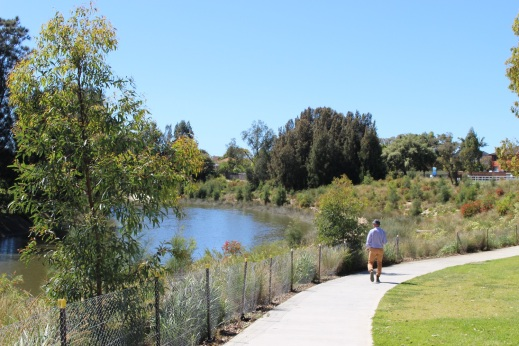 After - Cooks River